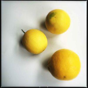 my meyer lemons