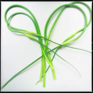 garlic scapes 2015