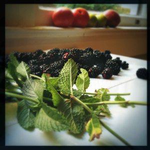 blackberries and mint
